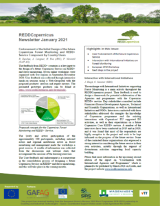 REDDCopernicus Newsletter 2021_01